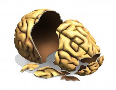 Bruised Brain ?